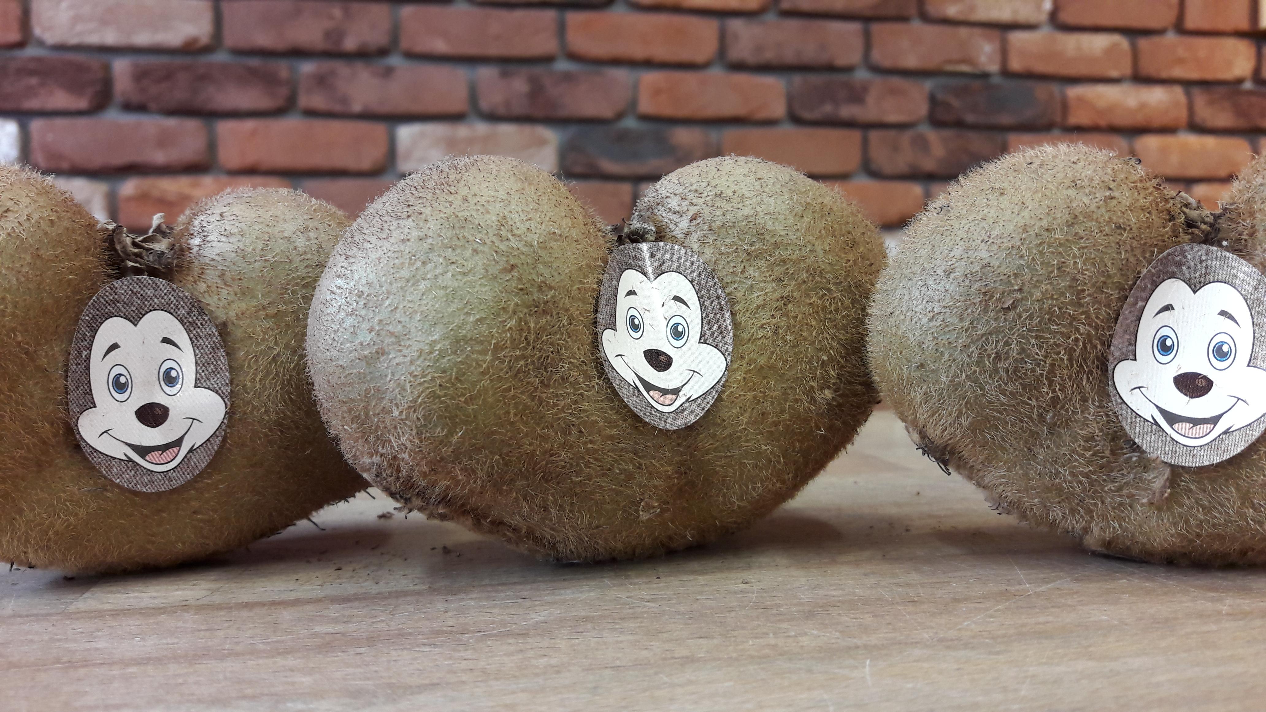 Sind die nicht süß? Vitaminreiche Mäuschen-Kiwi ab heute im Angebot!
