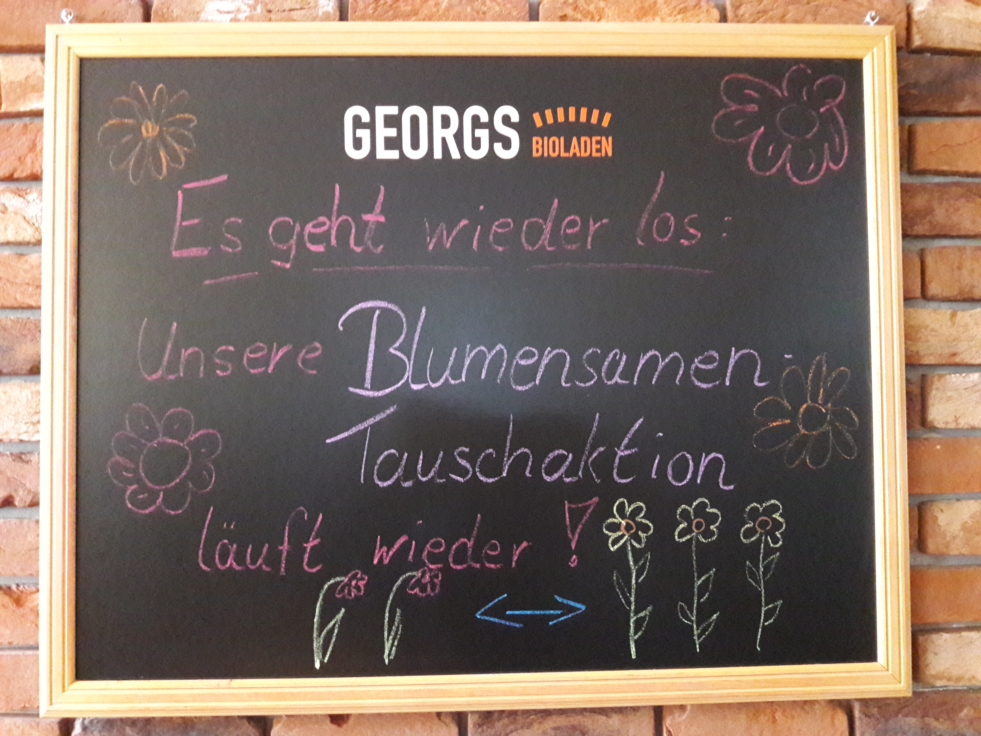 Blumensamentauschaktion: Für mehr Biodiversität!